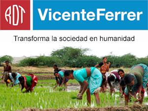 FUNDACIÓN VICENTE FERRER - ONG de desarrollo comprometida con la mejora de las condiciones de vida de las comunidades más desfavorecidas de Andhra Pradesh.